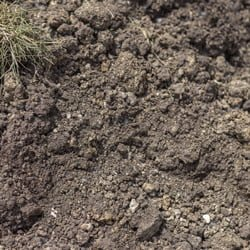 Foundation soil