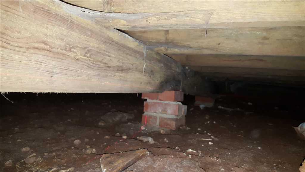 The ongoing moisture under this home caused by plumbing leaks made the beams to compress under the weight of the home.