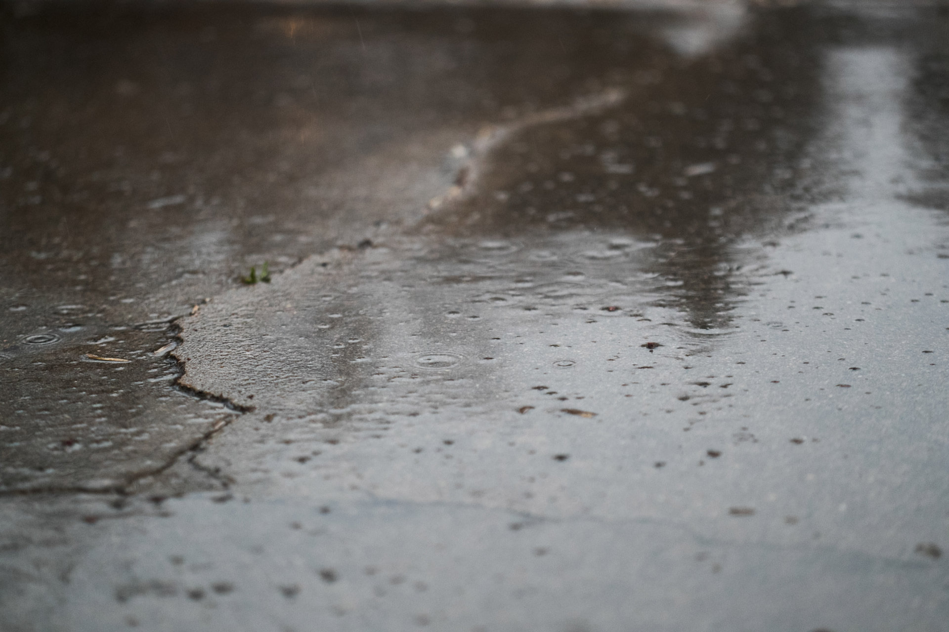 Cracked wet concrete